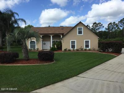 Port Orange Single Family Home For Sale: 2670 Ava Circle