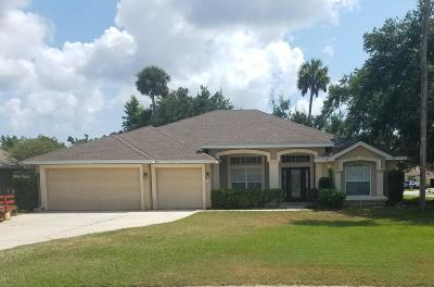Ormond Beach Single Family Home For Sale: 33 Wild Fern Lane