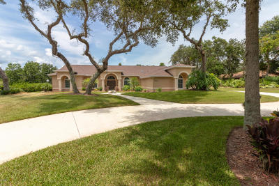 Port Orange Single Family Home For Sale: 5824 Spruce Creek Woods Drive