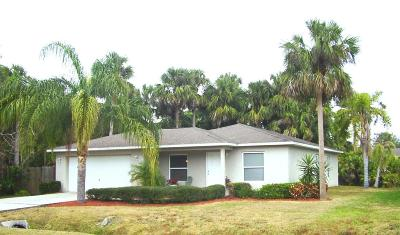 New Smyrna Beach Single Family Home For Sale: 2537 Chester Avenue