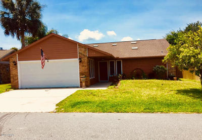 Volusia County Single Family Home For Sale: 144 Herring Gull Court