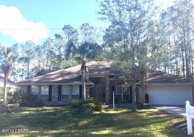 Palm Coast Single Family Home For Sale: 33 Edgewater Drive