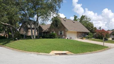 Volusia County Single Family Home For Sale: 121 Sawtooth Lane