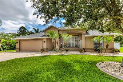 Volusia County Single Family Home For Sale: 6719 Duckhorn Court