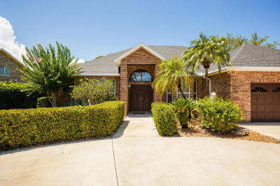 Daytona Beach Single Family Home For Sale: 200 Pleasant Valley Drive