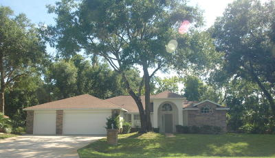Spruce Creek Fly In Single Family Home For Sale: 2642 Spruce Creek Boulevard
