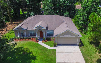 Palm Coast Single Family Home For Sale: 16 Royal Leaf Lane