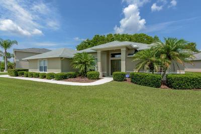 Port Orange Single Family Home For Sale: 6822 Stoneheath Lane