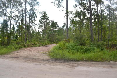 Volusia County Residential Lots & Land For Sale: 870 Twisted Pine Drive
