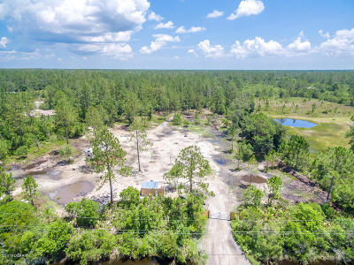 Volusia County Residential Lots & Land For Sale: 480 Juniper Lane