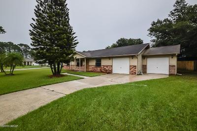 Volusia County Single Family Home For Sale: 1246 Robbin Drive