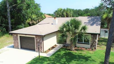Palm Coast Single Family Home For Sale: 89 Covington Lane