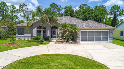 Palm Coast Single Family Home For Sale: 9 Pittwick Lane