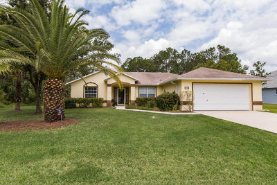 Palm Coast Single Family Home For Sale: 58 Baltimore Lane