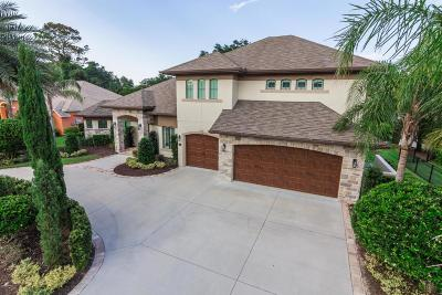 Ormond Beach Single Family Home For Sale: 67 Lakebluff Drive