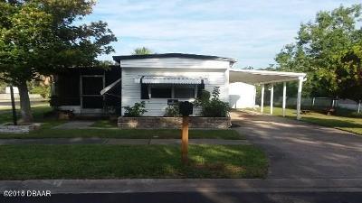 Port Orange Single Family Home For Sale: 5254 Wood Street