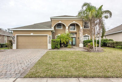 Daytona Beach Single Family Home For Sale: 224 Birkdale Drive