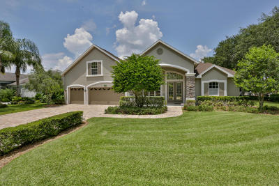 New Smyrna Beach Single Family Home For Sale: 720 Stonewood Court