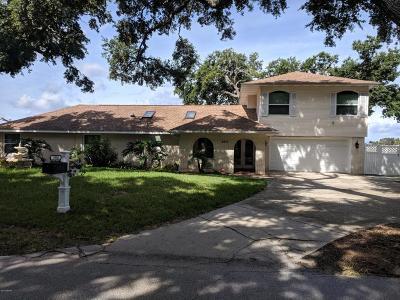 Ormond Beach Single Family Home For Sale: 2856 John Anderson Drive