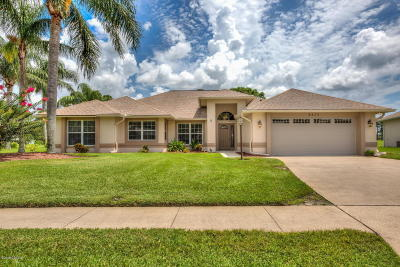 Port Orange Single Family Home For Sale: 6275 Paradise Island Court