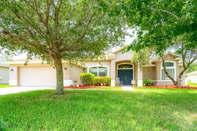 Port Orange Single Family Home For Sale: 1771 Creekwater Boulevard