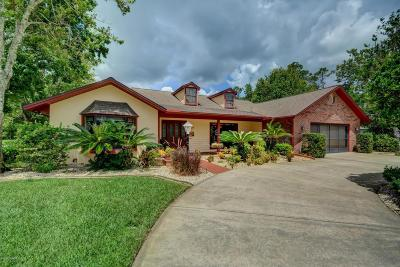 Palm Coast Single Family Home For Sale: 3 Woodlyn Lane