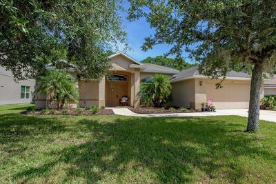 Port Orange Single Family Home For Sale: 1725 Goosecross Court