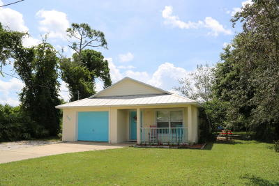 Port Orange Single Family Home For Sale: 409 N Willow Avenue