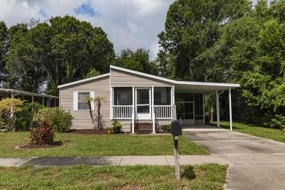 Daytona Beach Single Family Home For Sale: 1362 Blackcherry Street