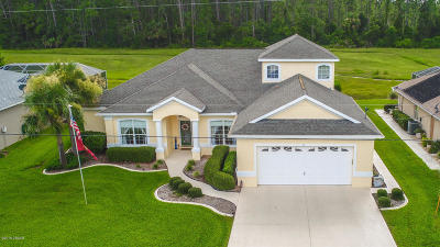 Palm Coast Single Family Home For Sale: 17 Lake Success Place