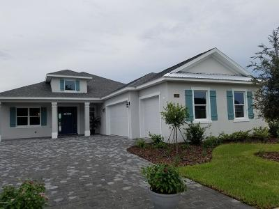 Daytona Beach Single Family Home For Sale: 129 Cerise Court
