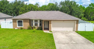 Palm Coast Single Family Home For Sale: 52 Langdon Drive