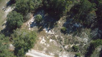 Volusia County Residential Lots & Land For Sale: Williams Lane