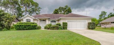 Palm Coast Single Family Home For Sale: 33 Boxwood Lane
