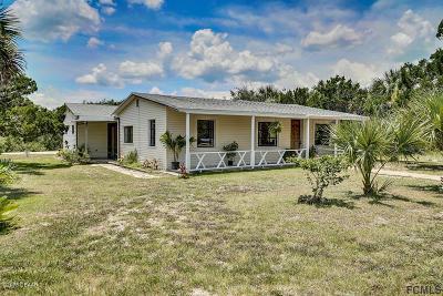 Flagler Beach Single Family Home For Sale: 1860 S Flagler Avenue