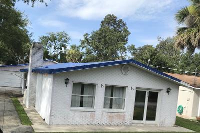 Port Orange Single Family Home For Sale: 5572 Magnolia Avenue