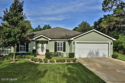 Palm Coast Single Family Home For Sale: 22 Sederholm Path