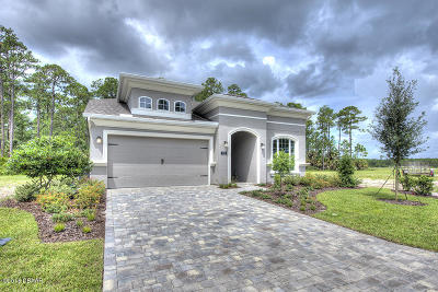 Ormond Beach Single Family Home For Sale: 820 Creekwood Drive