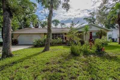 Ormond Beach Single Family Home For Sale: 771 E Lindenwood Circle