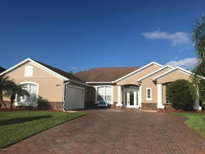 Daytona Beach Single Family Home For Sale: 264 Centennial Park Drive