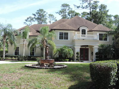 Ormond Beach Single Family Home For Sale: 4 Moss Point Drive