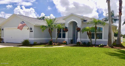 Port Orange Single Family Home For Sale: 6757 Ferri Circle