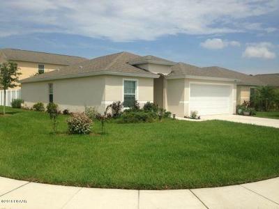 Port Orange Single Family Home For Sale: 5335 Cordgrass Bend Lane