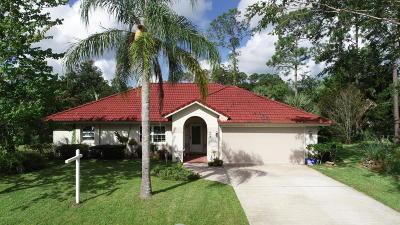 Palm Coast Single Family Home For Sale: 16 Village Circle