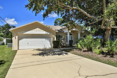 Palm Coast Single Family Home For Sale: 20 Easterly Place