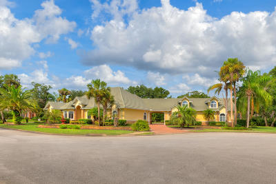 Ormond Beach Single Family Home For Sale: 3528 Kilgallen Court