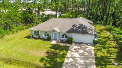 Palm Coast Single Family Home For Sale: 30 Red Birch Lane