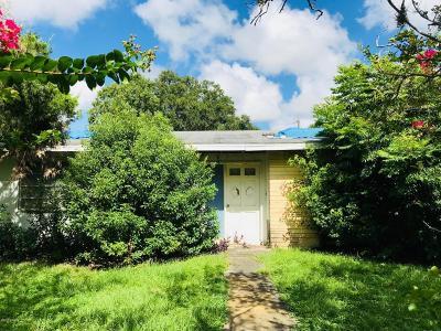 Ormond Beach Single Family Home For Sale: 241 Greenbriar Avenue
