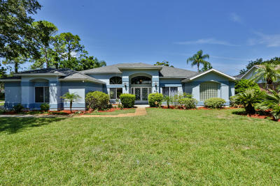 Ormond Beach Single Family Home For Sale: 43 China Moon Drive