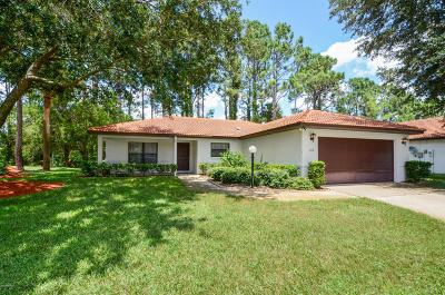Daytona Beach Single Family Home For Sale: 113 Chickadee Court